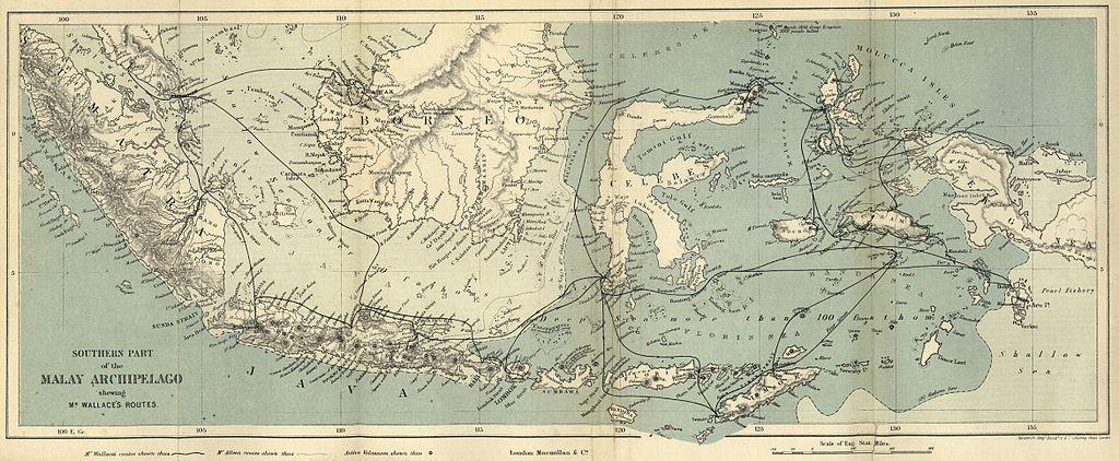 test/samples/TheMalayArchipelago/1024px-Map_of_Malay_Archipelago_Wallace_1869.jpg