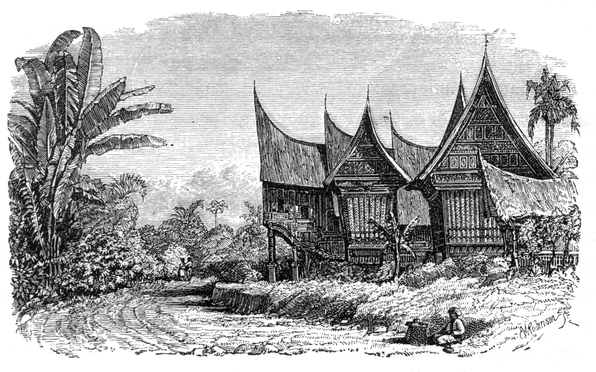 test/samples/TheMalayArchipelago/Malay_Archipelago_Chief's_House_and_Rice-shed_in_a_Sumatran_Village.jpg